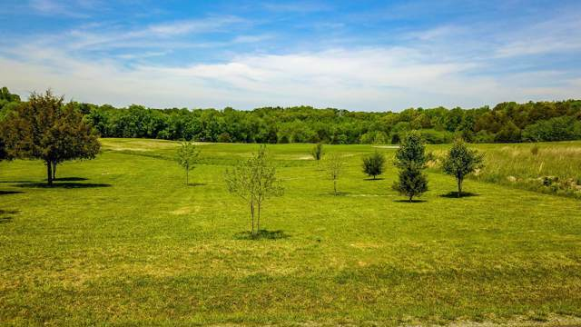 Kahite Trail, Vonore, TN 37885 (#1102529) :: Catrina Foster Group