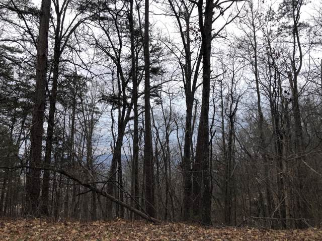 Big Spring Gap Rd, Pikeville, TN 37367 (#1102577) :: Billy Houston Group