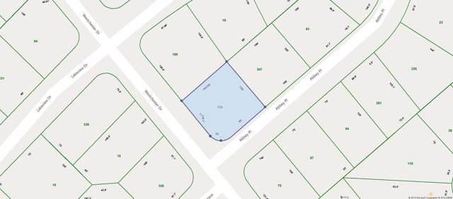 203 Westchester Drive, Crossville, TN 38558 (#1102664) :: Catrina Foster Group