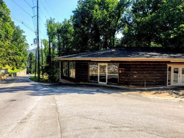 523 Cherokee Orchard Rd, Gatlinburg, TN 37738 (#1102708) :: The Terrell Team