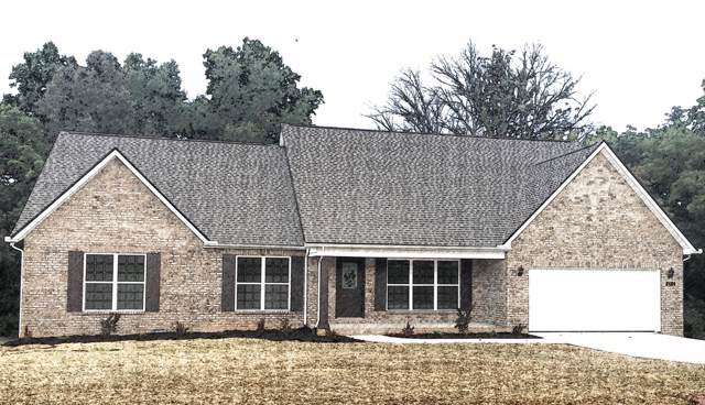1438 Sally View Drive, Friendsville, TN 37737 (#1102718) :: Catrina Foster Group