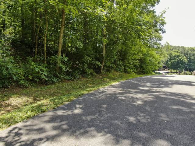 196 E Cove Drive, Greenback, TN 37742 (#1102739) :: Venture Real Estate Services, Inc.