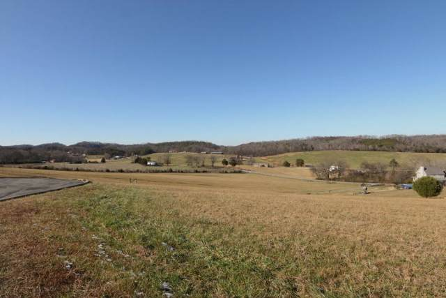 110 W Jonathan Dr., Madisonville, TN 37354 (#1103169) :: Billy Houston Group