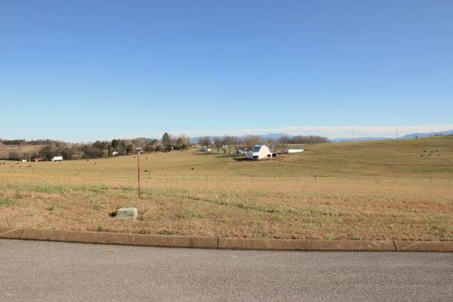 134 East Jonathan Dr., Madisonville, TN 37354 (#1103177) :: Billy Houston Group