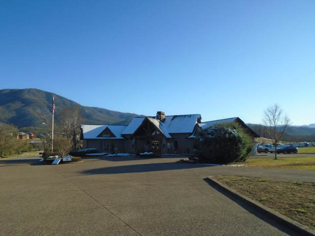 Pumpkin Path Way, Sevierville, TN 37862 (#1103351) :: Shannon Foster Boline Group