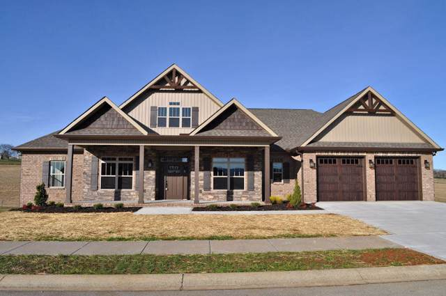 1320 Rippling Waters Circle, Sevierville, TN 37876 (#1103559) :: Venture Real Estate Services, Inc.