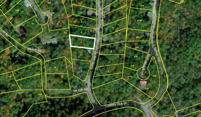 Lot 3 Cutter Gap Rd, Townsend, TN 37882 (#1103644) :: Billy Houston Group