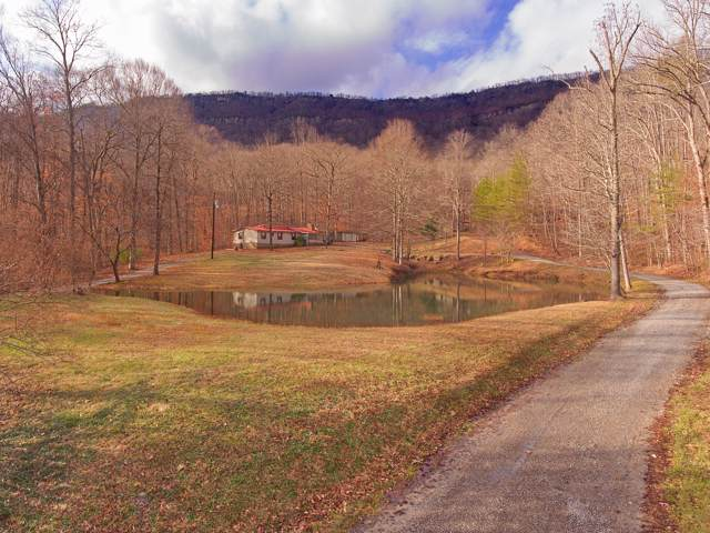 359 Earl Woodson Lane, LaFollette, TN 37766 (#1104104) :: Adam Wilson Realty