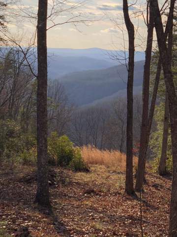 E Overlook Rd #5, Monterey, TN 38574 (#1104328) :: Venture Real Estate Services, Inc.