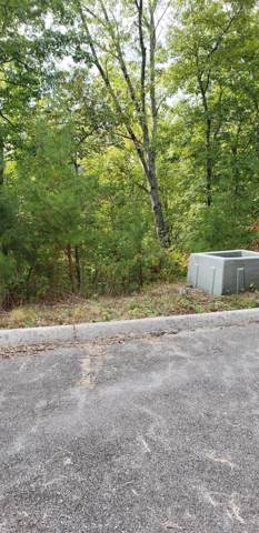 Address Not Published, Sevierville, TN 37862 (#1104745) :: The Terrell Team