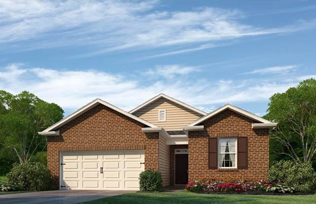 9424 Trout Lily Lane, mascot, TN 37806 (#1105396) :: Shannon Foster Boline Group
