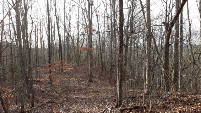 Lot #459 Crystal Springs Road, Rockwood, TN 37854 (#1105439) :: Venture Real Estate Services, Inc.