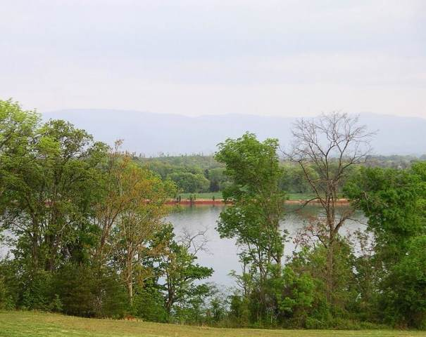 215 Rock Point -Lot 425 Drive, Vonore, TN 37885 (#1105448) :: Shannon Foster Boline Group