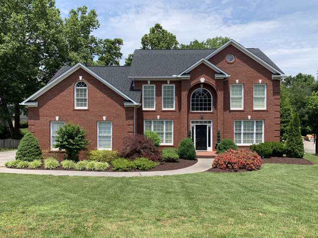 317 Axton Drive, Knoxville, TN 37934 (#1105617) :: The Cook Team
