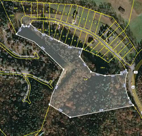 Lot 37-R Wears Valley Off Rd, Sevierville, TN 37862 (#1105657) :: The Terrell Team