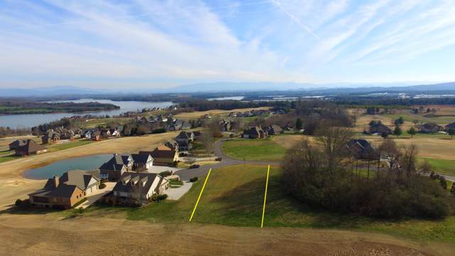 181 Osprey Circle, Vonore, TN 37885 (#1105687) :: Shannon Foster Boline Group