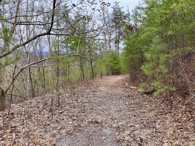 Oliver James Way, Sevierville, TN 37862 (#1105831) :: Shannon Foster Boline Group