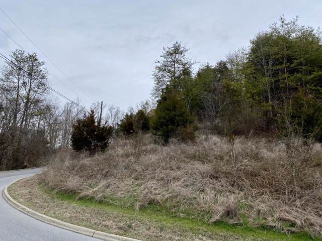 Bald Eagle Drive, Sevierville, TN 37876 (#1105834) :: Shannon Foster Boline Group