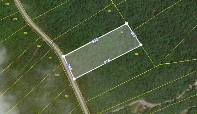 Hilltop Lane, Wilder, TN 38589 (#1106175) :: Billy Houston Group