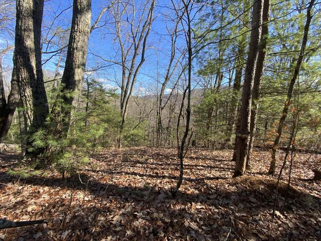 Little Bear Trail, Cosby, TN 37722 (#1106948) :: Shannon Foster Boline Group