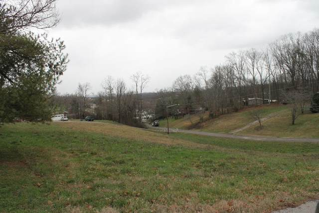Lot 14/20 Rebecca Lane, Jefferson City, TN 37760 (#1107323) :: Shannon Foster Boline Group