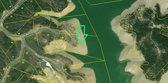 L30 Emerald Isle Blvd, Dandridge, TN 37725 (#1107591) :: Billy Houston Group