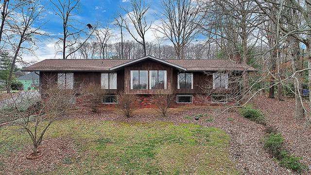 10636 Sandpiper Lane, Knoxville, TN 37922 (#1107844) :: The Sands Group