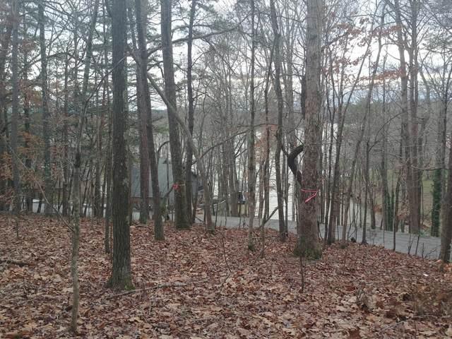 1103 Wilderness Rd, Friendsville, TN 37737 (#1107871) :: Catrina Foster Group