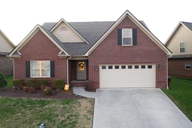 3317 Parrish Hill Lane, Knoxville, TN 37938 (#1107988) :: The Sands Group