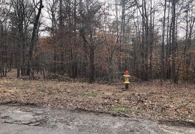 Old Holderford Rd, Lot 13, Kingston, TN 37763 (#1108220) :: Exit Real Estate Professionals Network