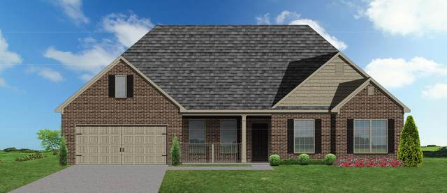 10657 Bald Cypress Lane, Knoxville, TN 37922 (#1108377) :: Realty Executives