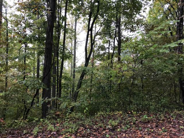 Overlook Trail Lot 54, Maynardville, TN 37807 (#1108513) :: The Cook Team