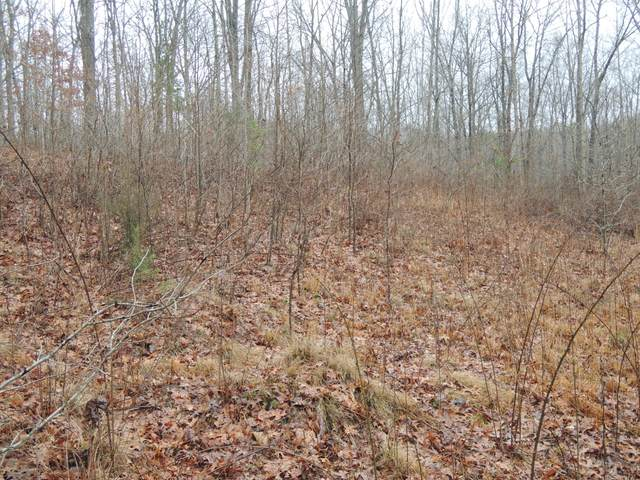 Dulog Trail, Jamestown, TN 38556 (#1108899) :: Billy Houston Group
