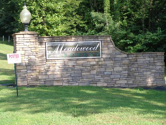 Lot 16 Meadowood Rd, Newport, TN 37821 (#1108918) :: Realty Executives Associates