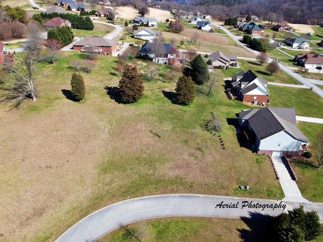 606 Eagle Lane, Jefferson City, TN 37760 (#1109538) :: Tennessee Elite Realty