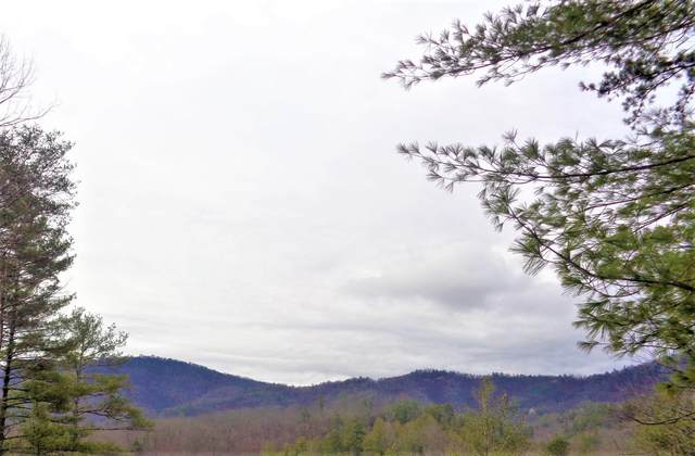 Ace Gap Rd, Townsend, TN 37882 (#1109784) :: Tennessee Elite Realty