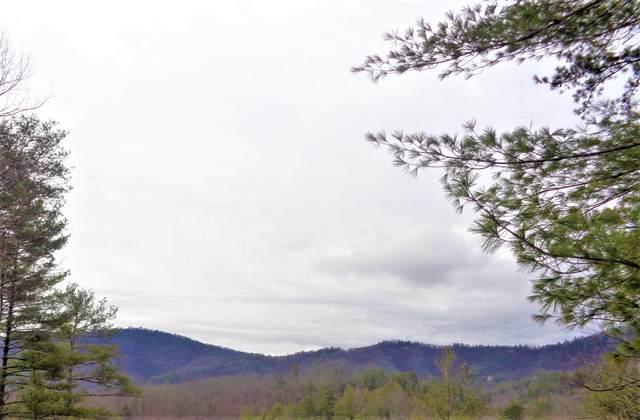 Ace Gap Rd, Townsend, TN 37882 (#1109784) :: Catrina Foster Group