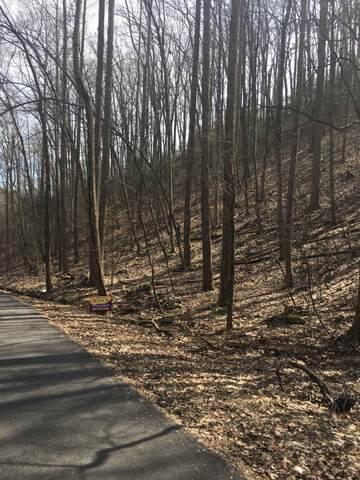 Laddiebuck Lane, Gatlinburg, TN 37738 (#1110012) :: Tennessee Elite Realty