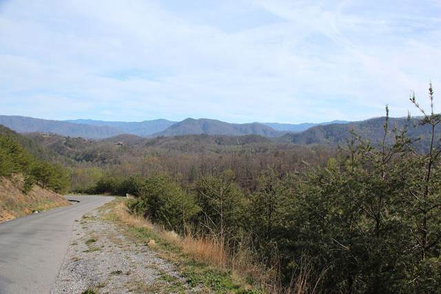 Lot 166E Jones Creek Lane, Sevierville, TN 37862 (#1110016) :: Catrina Foster Group
