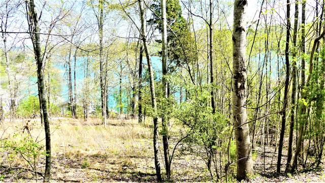 Deer Hill Lane, LaFollette, TN 37766 (#1110320) :: Billy Houston Group