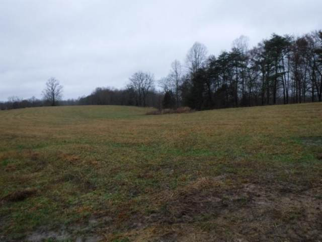 41.69ac Arrowhead Rd, Moss, TN 38575 (#1110669) :: Venture Real Estate Services, Inc.