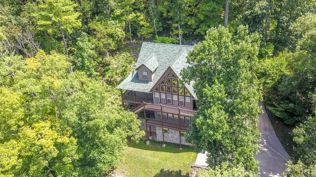 665 Country Club Rd, Townsend, TN 37882 (#1110671) :: Billy Houston Group