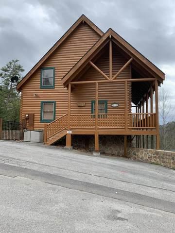 1045 Black Bear Cub Way, Sevierville, TN 37862 (#1110685) :: Exit Real Estate Professionals Network