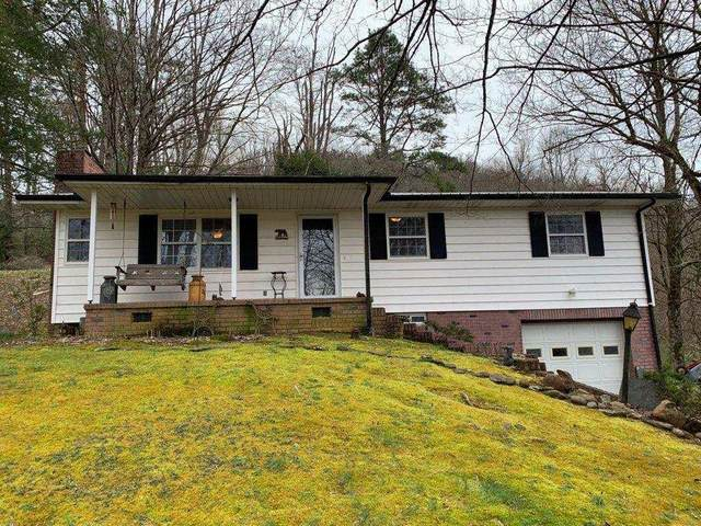 120 Smoky Drive, Townsend, TN 37882 (#1110837) :: Venture Real Estate Services, Inc.