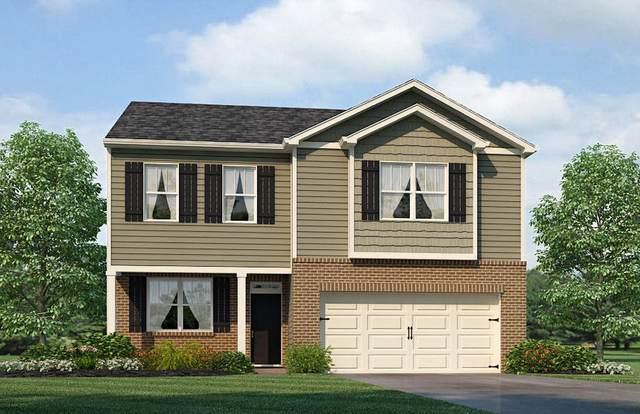 331 Caroline Court, Talbott, TN 37877 (#1110895) :: Venture Real Estate Services, Inc.
