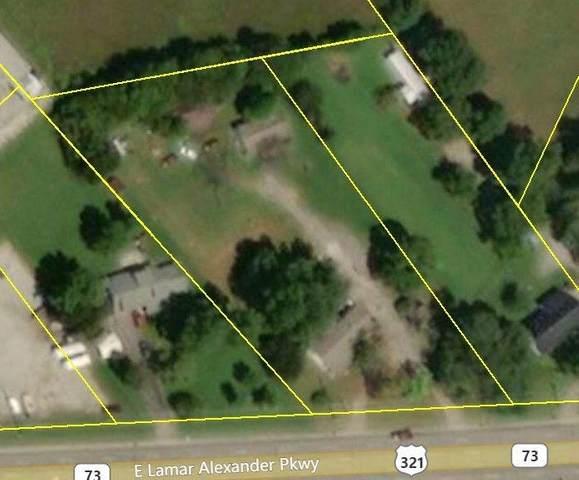 3247 E Lamar Alexander Pkwy, Maryville, TN 37804 (#1111281) :: Billy Houston Group