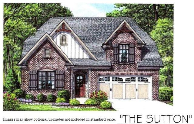 Izzy Mule Lane, Knoxville, TN 37932 (#1111319) :: Venture Real Estate Services, Inc.