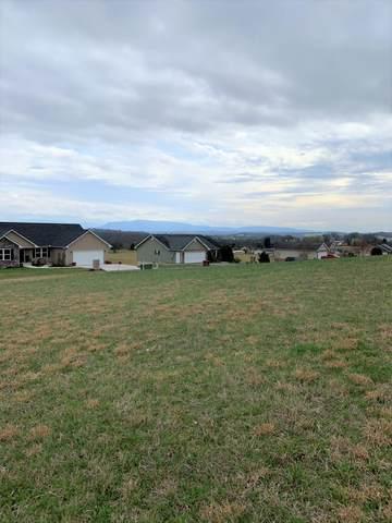 Tuckahoe View Tr, Kodak, TN 37764 (#1111333) :: Tennessee Elite Realty