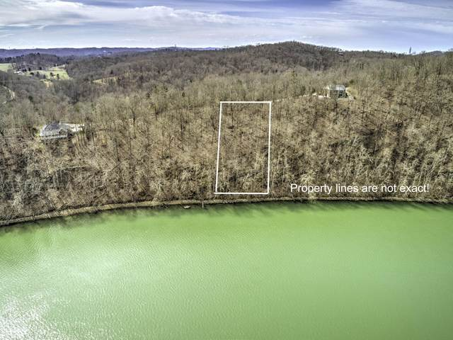 Lot 8 Sheerwater Rd, Kingston, TN 37763 (#1111527) :: Catrina Foster Group