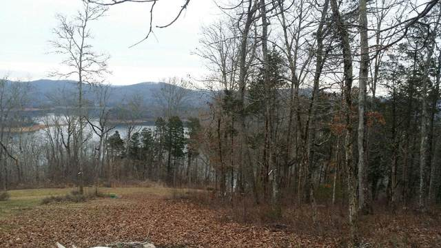 Lot 263 Lakeview Drive, Sharps Chapel, TN 37866 (#1112476) :: Adam Wilson Realty